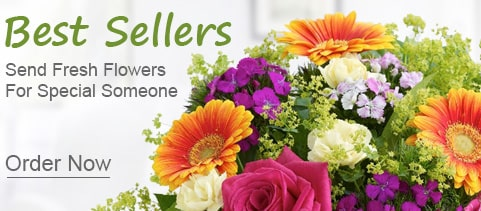 Best Seller Flowers mumbai