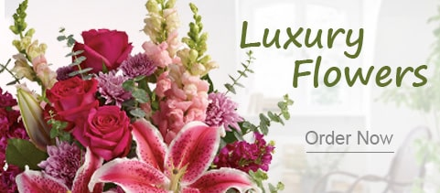 Luxury Flowers mumbai