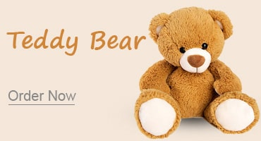 Teddy bear mumbai