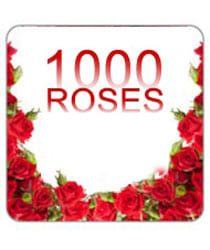 1000 Red Roses
